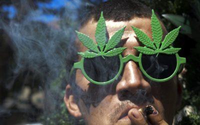 «Vi racconto le lobby che non vogliono la legalizzazione della Cannabis»